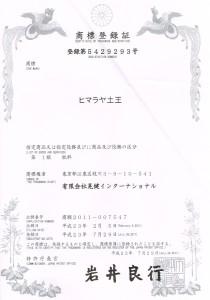 syouhyo4